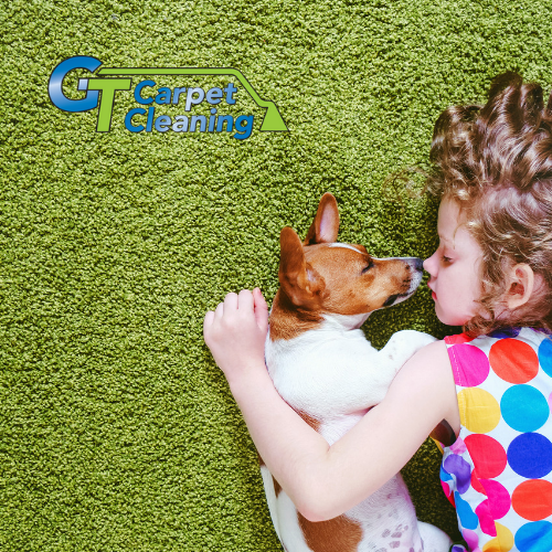 GT Carpet Cleaning Residential Carpet Cleaning Service